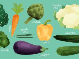 Les 10 légumes de saison à consommer en Août